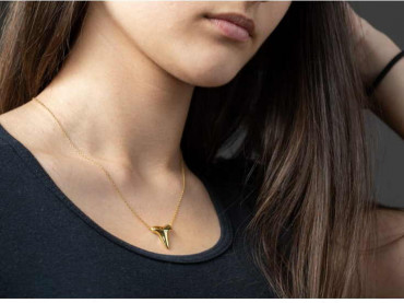 Gold Necklace - Shark Tooth